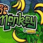 lost-monkey