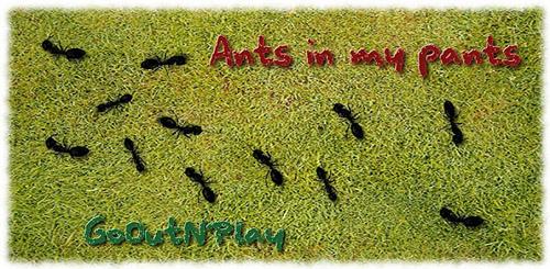 Ants in my pants v1.0