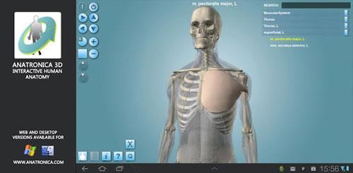 Anatomy 3D Pro Anatronica v1.37