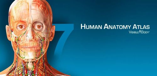 Human Anatomy Atlas from Visible Body v7.4.03