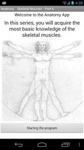 Anatomy - Skeletal Muscles2