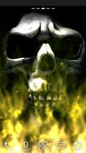 Flames and Skulls5