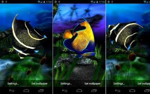 My 3D Fish3