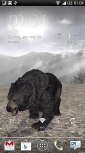 Pocket Bear HD 6