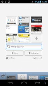 Sleipnir Mobile - Web Browser 9