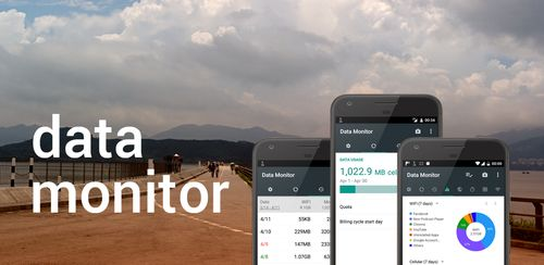 Data Monitor: Simple Net-Meter v1.0.196