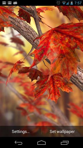 Autumn Tree Live Wallpaper v1.15