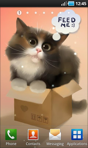 Cat in the Box v1.0.2