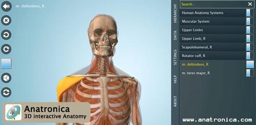 Anatomy-3D-Pro---Anatronica