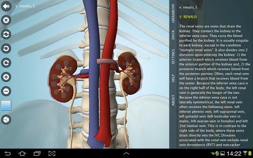Anatomy 3D Pro – Anatronica v2.0.6