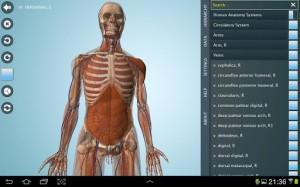 Anatomy 3D Pro - Anatronica3