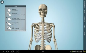 Anatomy 3D Pro - Anatronica4