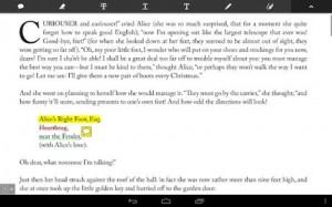 Adobe Reader4