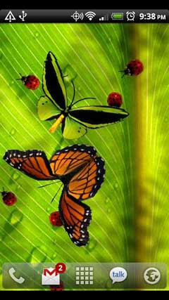Friendly Bugs Live Wallpaper v2.15