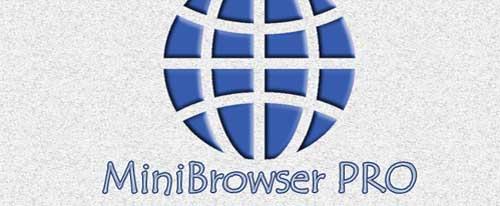 MiniBrowser PRO v2.5
