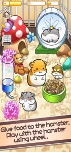 Hamster Life 36