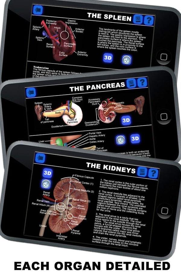 Anatomy 3D: Organs v1.0.3 + data