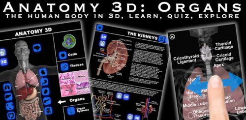 Anatomy 3D: Organs v1.0.3 + data