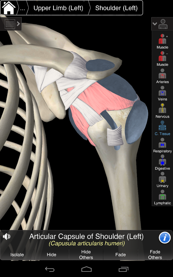 Essential Anatomy 3 v1.1.0 + data