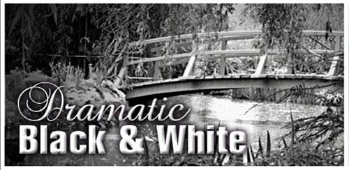 Dramatic Black & White v2.26