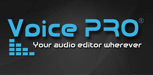 Voice-PRO