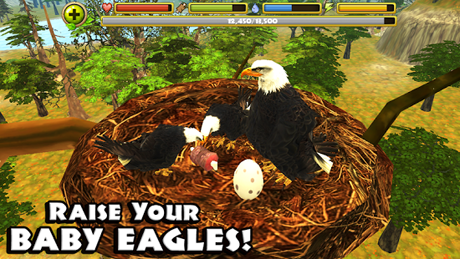 Eagle Simulator v1.0