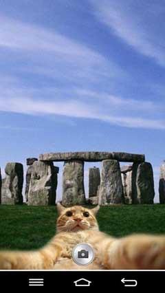 Cat Selfie v1.4