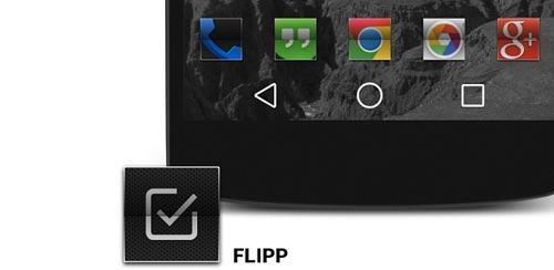 FLIPP v1.0