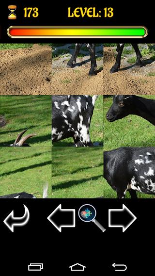 Puzzle Pets v1.0.1a