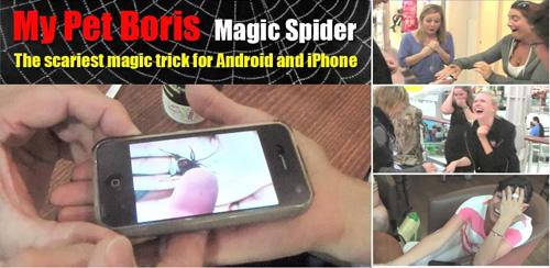 Magic-Spider