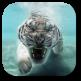 Tiger Live Wallpaper789