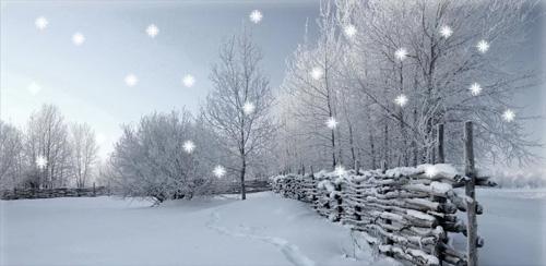 WinterSnow