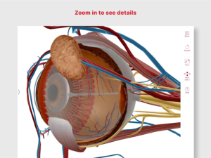 تصویر محیط Anatomy & Physiology v6.0.71 + data