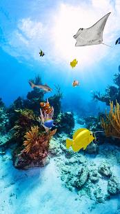 Aquarium 360 LWP v1.05