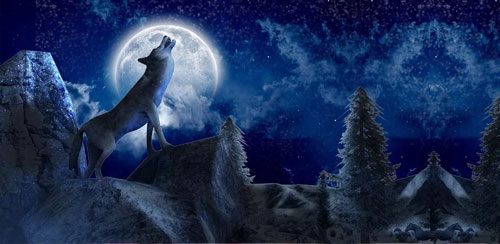 بازی شبیه ساز گرگ خشمگین Angry Wolf Simulator 3D v1.1