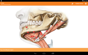 تصویر محیط Sobotta Anatomy v2.10.5 + data