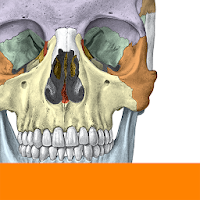 نرم افزار سه بعدی آناتومی بدن آیکون