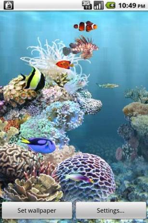aniPet Aquarium Live Wallpaper v2.5.2