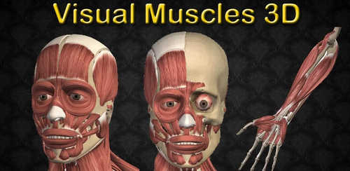 Visual Muscles 3D v3.0.0