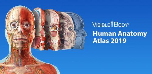 Human Anatomy Atlas 2019: Complete 3D Human Body v2020.0.71