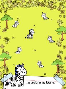 Zebra Evolution v1.0