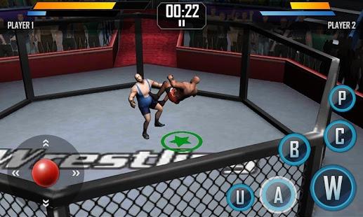 Real Wrestling 3D v1.5
