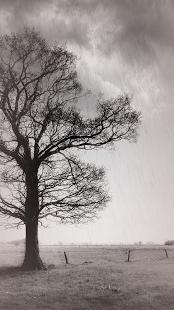 Rainy Daze v2.28