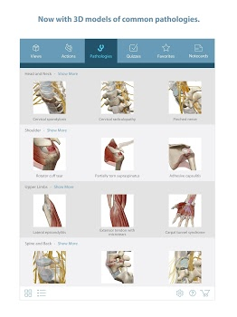 Muscle Premium – 3D Guide v6.1.31 + data