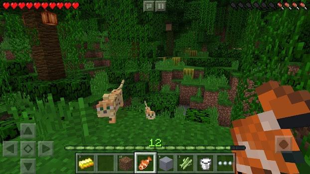 Minecraft v1.2.5.0