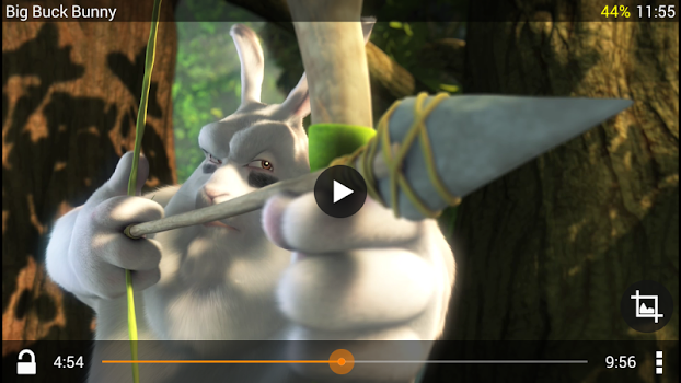 VLC for Android v2.1.13