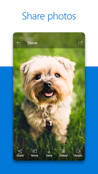 Microsoft OneDrive v5.16