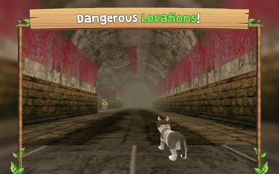 Cat Sim Online: Play with Cats v1.6
