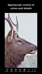 تصویر محیط Polarr Photo Editor v5.5.10