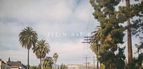 Feelm Natura – Analog Filters v1.0.19